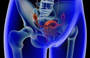 Read more about the article Pelvic organ prolapse……Ooops whats falling down