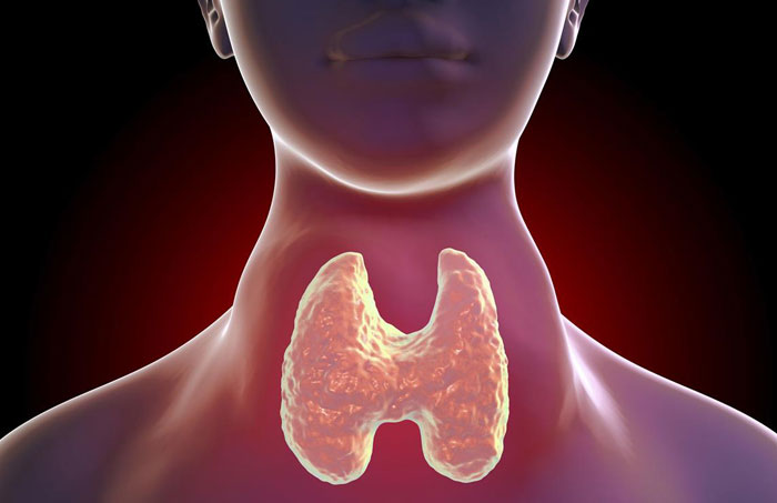 Read more about the article When your thyroid gland goes into overdrive